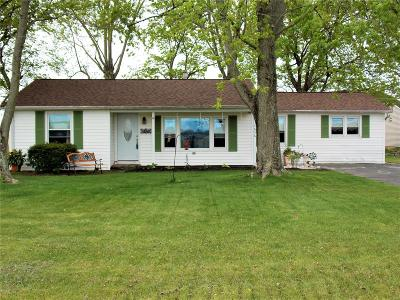 St Clair County Single Family Home For Sale: 4646 Urbana Road