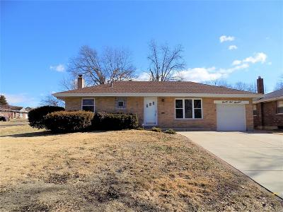 Single Family Home For Sale: 9100 Kit Drive