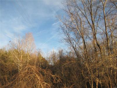 Madison County, Jefferson County, St Francois County Residential Lots & Land For Sale: Bogy Street