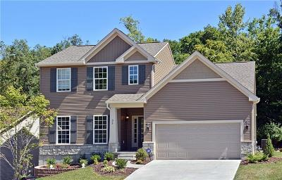 Single Family Home For Sale: 1 Sienna @ Aspen Meadows Court