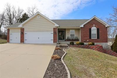 Franklin County Single Family Home For Sale: 1805 Jessica Hills Court