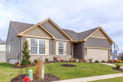 Wentzville MO Single Family Home For Sale: $271,115