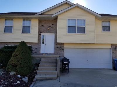 Edwardsville Single Family Home For Sale: 520 Gilbert Drive