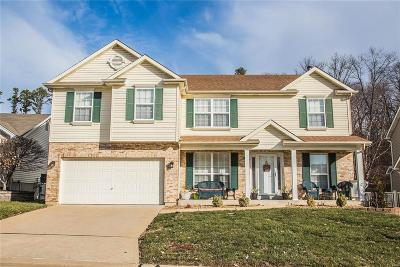 Single Family Home For Sale: 711 Shadow Pine Drive