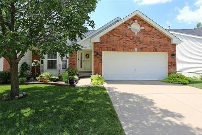 Single Family Home For Sale: 709 Villas Estates Drive