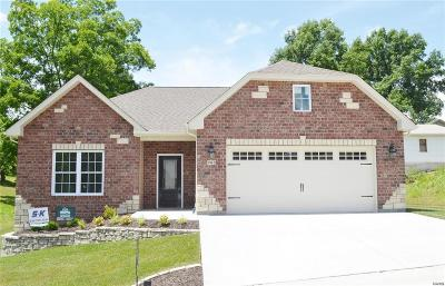 Franklin County Single Family Home For Sale: 1 Lot Hanover Way Tbb