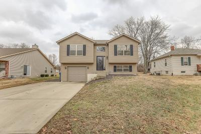 Maryville Single Family Home For Sale: 2214 Williams Street