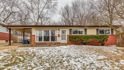 Single Family Home For Sale: 460 Larry Drive