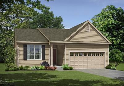 Wentzville Single Family Home For Sale: 1 Tbb-Denmark @pinewoods Estates