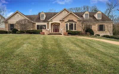 Single Family Home For Sale: 9186 Fox Bridge Drive