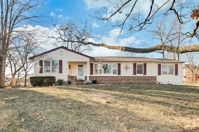 Single Family Home For Sale: 250 Spring Drive