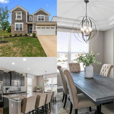 Single Family Home For Sale: 101 Grenache Ct.