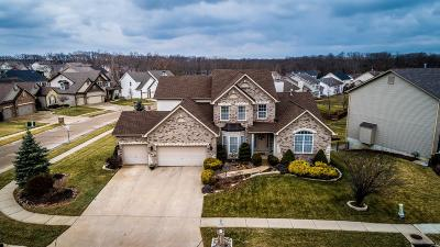 Wentzville Single Family Home For Sale: 321 Parkview Manor Lane