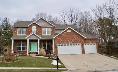 Edwardsville Single Family Home For Sale: 209 Valley View Drive