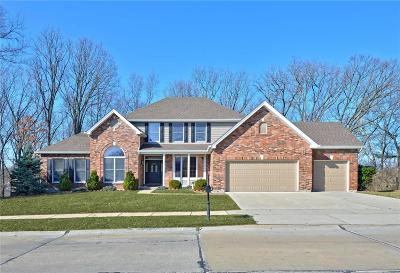 Single Family Home For Sale: 16810 Westglen Farms Drive
