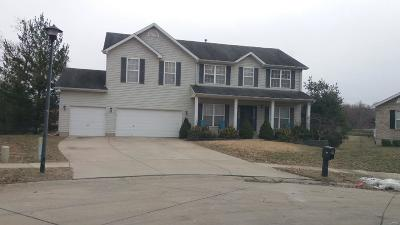 Wentzville Single Family Home For Sale: 912 Indian Rock Court