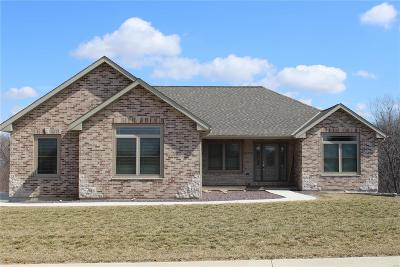 Hannibal MO Single Family Home For Sale: $410,000