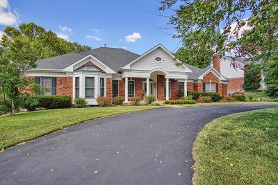 Sunset Hills Single Family Home For Sale: 12809 Pointe Drive