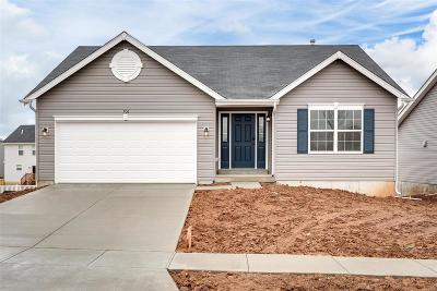 Wentzville Single Family Home For Sale: 706 Saddle Ridge Road