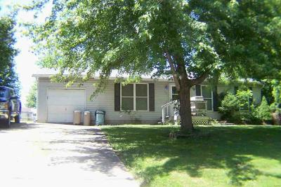 Lincoln County, Warren County Single Family Home For Sale: 701 Pinckney Street