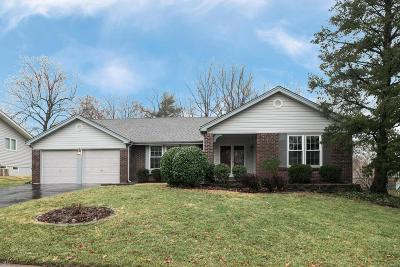 Single Family Home For Sale: 11732 Summerwood Drive