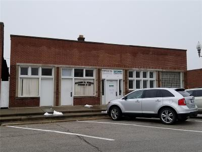 Commercial For Sale: 541 9th Street