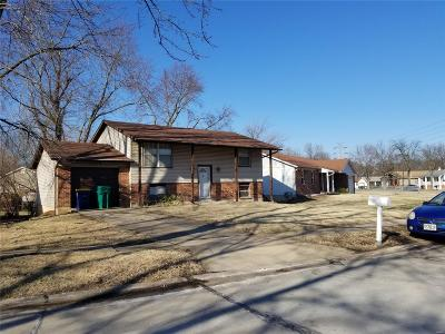 Single Family Home For Sale: 1315 Red River Drive
