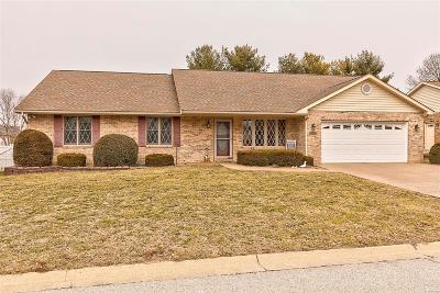 Belleville Single Family Home For Sale: 409 Hickory Manor