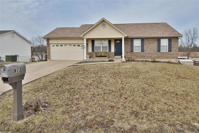 Lincoln County, Warren County Single Family Home For Sale: 913 Sherwood Drive