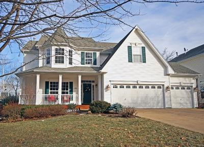 St Louis Single Family Home For Sale: 410 Hill Drive