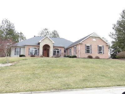 Single Family Home For Sale: 4940 Wilderness Point