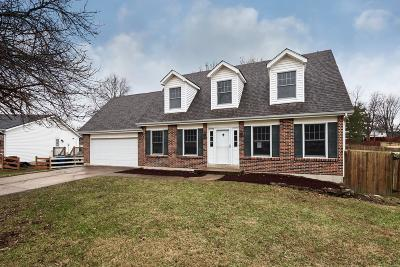 Florissant Single Family Home For Sale: 1159 Holly River Drive