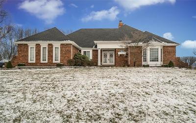 St Charles County Single Family Home For Sale: 650 Clifden Drive