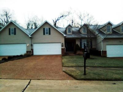 Fairview Heights Single Family Home For Sale: 1082 Stonewolf Trail