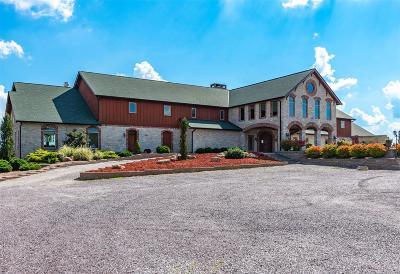 Ste Genevieve Single Family Home For Sale: 12323 Rottler Lane