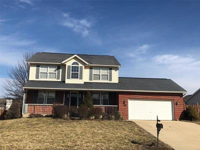 Fairview Heights Single Family Home For Sale: 847 Clemson Avenue