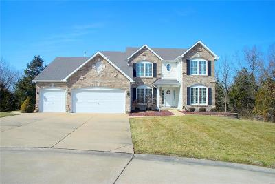 Byrnes Mill Single Family Home For Sale: 6823 Silverstone