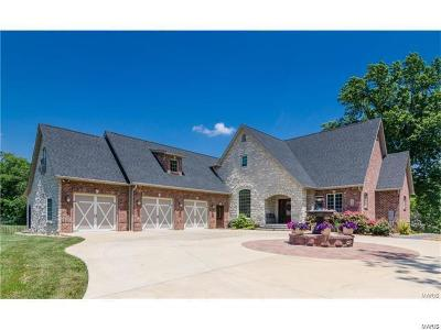 Troy IL Single Family Home For Sale: $600,000