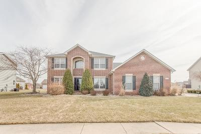 Belleville, Collinsville, Edwardsville, Glen Carbon, Highland, O Fallon, St Jacob, Swansea, Troy, Caseyville, Columbia, Fairview Heights, Lebanon, Mascoutah, Millstadt, New Baden, Shiloh, O'fallon Single Family Home For Sale: 9599 Mallard Drive