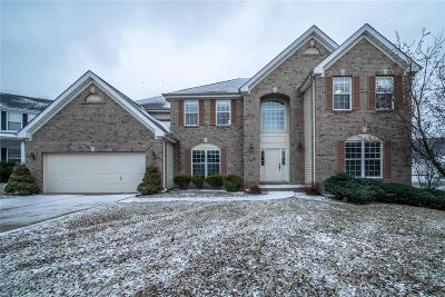 Chesterfield Single Family Home For Sale: 15308 Nooning Tree Court