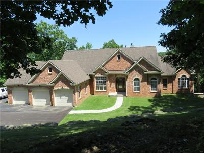 Single Family Home For Sale: 800 Wildflower Valley Drive