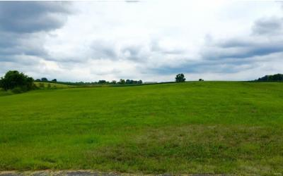 Residential Lots & Land For Sale: 926 Virginia