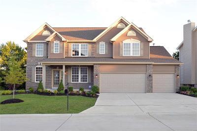 Cottleville Single Family Home For Sale: 511 Roaring Fork Court
