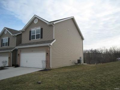 O'Fallon Single Family Home For Sale: 172 Weatherby Landing Drive