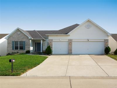 Single Family Home For Sale: 59 Boschert Creek Drive