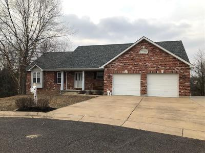 Franklin County Single Family Home For Sale: 101 Tina Drive
