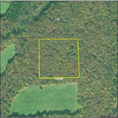 Foristell Residential Lots & Land For Sale: Pauk Lane Lot #3