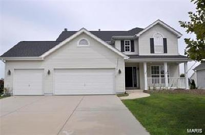 Fairview Heights Single Family Home For Sale: 609 Wild Horse Creek