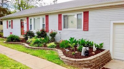 Single Family Home For Sale: 2529 Skyline Drive