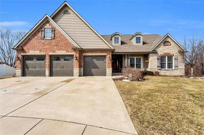 Dardenne Prairie Single Family Home Active Under Contract: 19 Windrose Lake Court